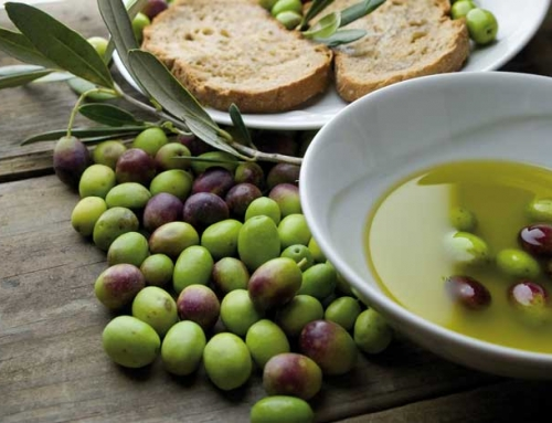 Bread and Olive Oil: 2 basics of Tuscan Cooking