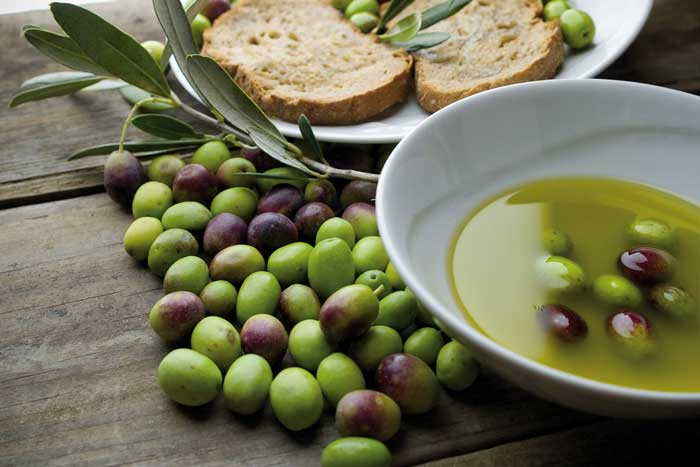 Tasting of extra virgin olive oil from Tuscany guaranteed own production