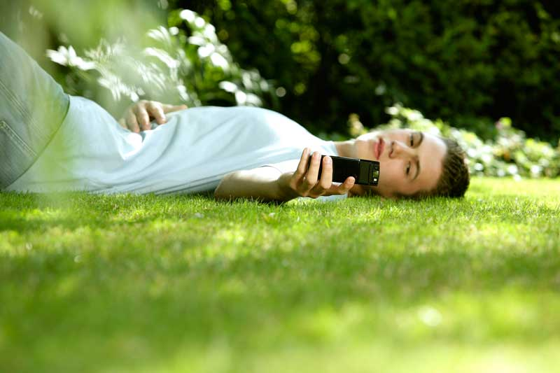 Relax on the lawn with the possibility of using free wifi for internet connection